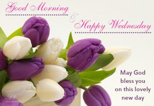 Happy Wednesday & Good Morning Wishes Quotes
