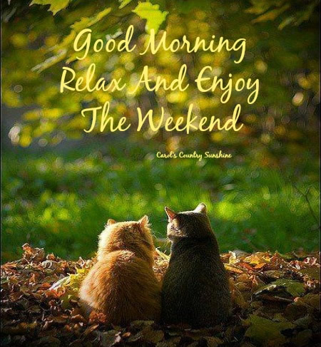 Happy Saturday Quotes With Weekend Day Messages