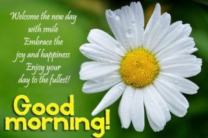 Good Morning Messages For Sister Quotes Sms Latest Wishes Quotz